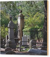 Graveyard In Charleston Wood Print