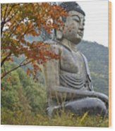 Great Buddha In Autumn Wood Print