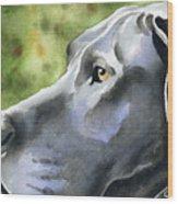 Great Dane  Wood Print