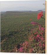 Great Rift Valley Ethiopia Wood Print