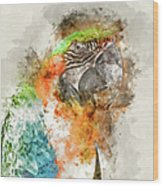 Green And Orange Macaw Bird Digital Watercolor On Photograph Wood Print