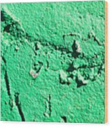 Green Background Wood Print