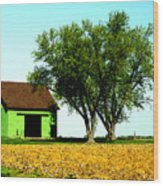 Green Barn  Wood Print