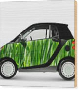 Green Mini Car Wood Print