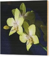 Green Orchid Wood Print