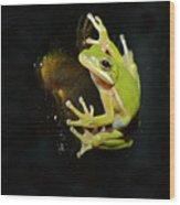 Green Tree Frog Wood Print