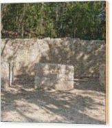 Groupo Mecanxoc At The Coba Ruins  Wood Print