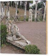 Hadrians Villa Wood Print