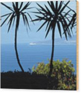 Haifa Bay Wood Print