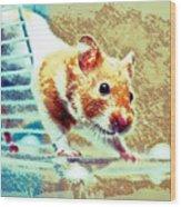 Hamster Wood Print