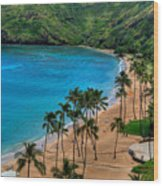 Hanauma Bay Wood Print