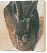 Hare 1528  Wood Print