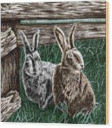 Hare Line  Wood Print
