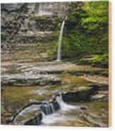 Havana Glen's Eagle Falls Wood Print