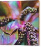 Hawaii Plants And Flowers Wood Print