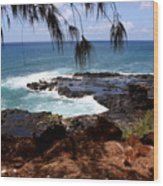 Hawaiian Snapshot Wood Print