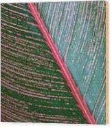 Heliconia Leaf Wood Print