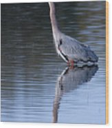Heron Reflection Wood Print