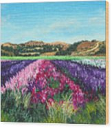 Highway 246 Flowers 3 Wood Print