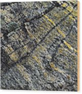 History Of Earth 5 Wood Print