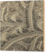 Extraordinary Hoarfrost Scallop Patterns In Sepia Wood Print