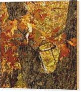 Hometown Series - Deep In The Woods Wood Print