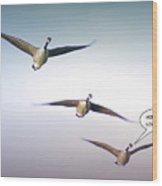 Honk If You Love Flying Wood Print