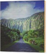 Ho'omaluhia Botanical Garden Wood Print