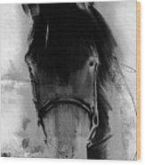 Horse Portrait  Wood Print