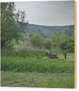 Horsedrawn Haycart, Transylvania 2 Wood Print