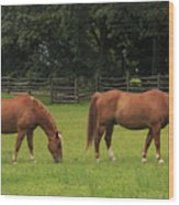 Horses In A Field Wood Print