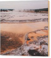 Hot Springs In Yellowstone. Wood Print