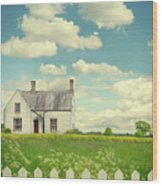 House In The Countryside Wood Print
