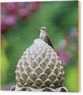 Hummingbird On Garden Water Fountain Wood Print