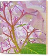 Hydrangeas Flowers Art Prints Hydrangea Art Giclee Baslee Troutman Wood Print