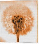 I Wish In Orange Wood Print