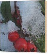 Ice Berries Wood Print