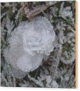 Ice Rose Wood Print