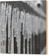 Icicles At Attention Wood Print