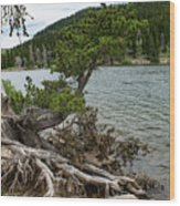 Idaho Lake Wood Print