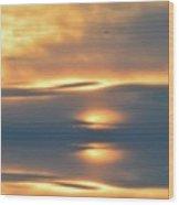 In The Sky  Wood Print