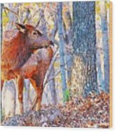 In The Wild Wood Print