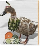 Indian Duck Wood Print