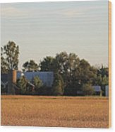 Indiana Farmland  Wood Print