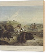 Indians Hunting The Bison Wood Print