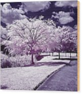 Infrared Garden Wood Print