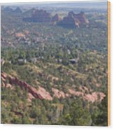 Intemann Nature Trail Wood Print