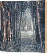 Into The Unknown Wood Print