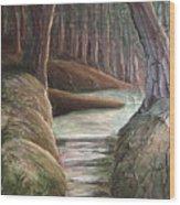 Into The Woods II Wood Print