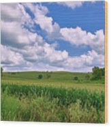 Iowa Cornfield Wood Print